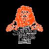 Shivaji Park Lions Cricket Logo