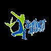Sylhet Sixers Cricket Logo
