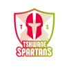 TWS Cricket Logo