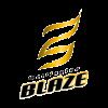 Wellington Blaze Women Cricket Logo