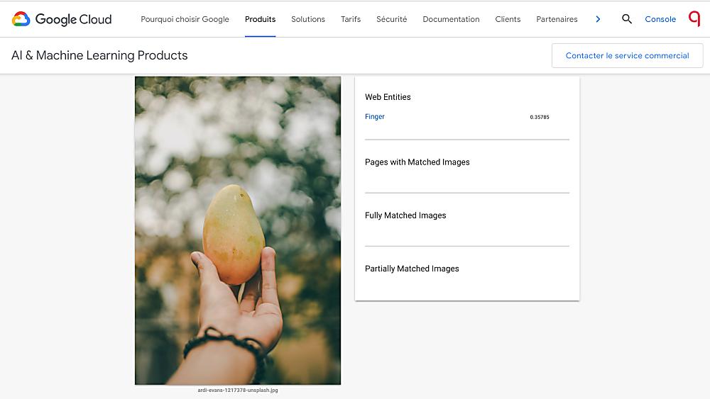accessibilité web : test d'analyse d'image