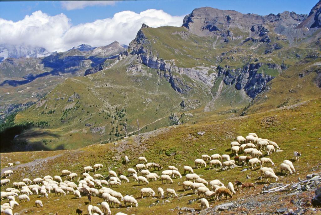 11-a - L'ensembre Aran-Roisette vu du sentier n.30 de Cheneil.