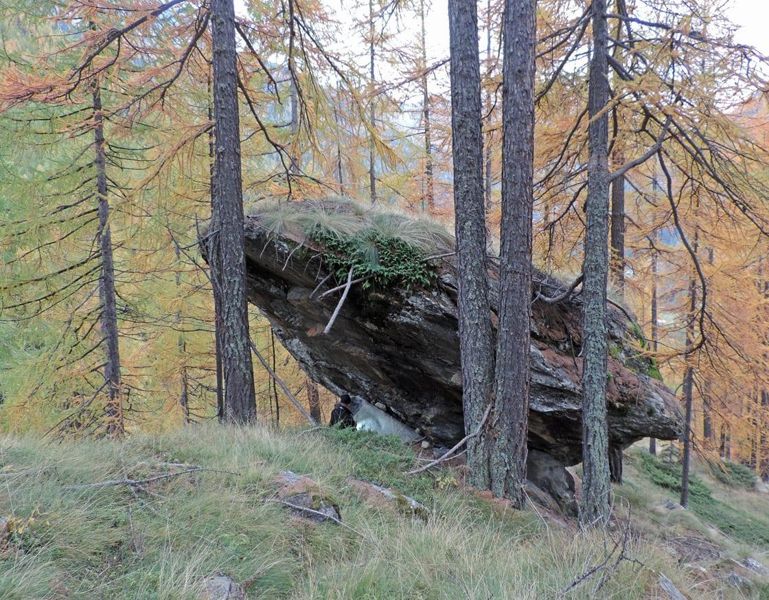 03. Il gran masso di serpentinite in bilico sul cordone morenico. Sotto, la lastra di pietra ollare.