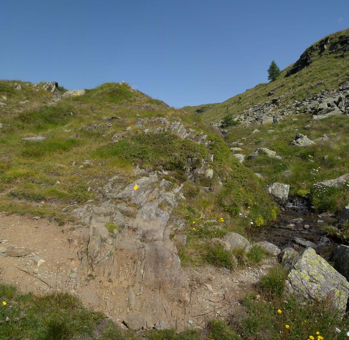 """12a. Fra le metabasiti, qua e là affiorano rocce più friabili che fanno piccole isole di suolo polveroso. Sono """"spruzzi"""" di antichi fanghi oceanici."""