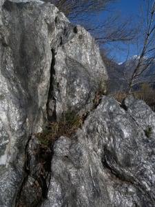 2. Rocher micacé éboulé au bord de la Doire