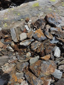 11. Quelques échantillons de l'hématite à l'entrée de l'ancienne mine.