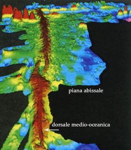 2. Rilevamento in 3D del fondo attuale dell'Oceano Pacifico. Le parti più elevate sono in marrone, quelle in blu le più depresse. Da Robert e Bousquet, 2013.