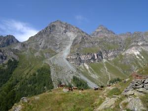 3. L'alpeggio dell'Aventine.