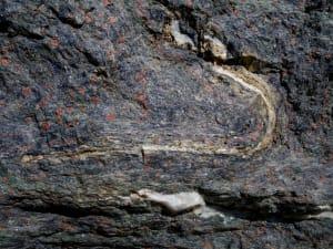 5. Boudinage souligné par le quartz et l'épidote
