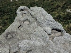 06. Faccia superiore di un blocco di metagranito a struttura interna disposta in piani. Forme di erosione controllate dai piani di giacitura dei minerali.