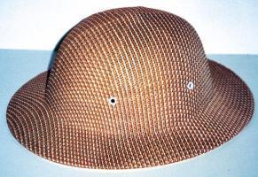 Bee Helmet