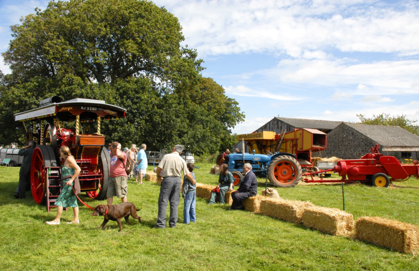 Summer agricultural shows