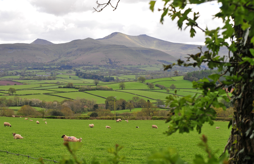 Walking the Brecon Beacons