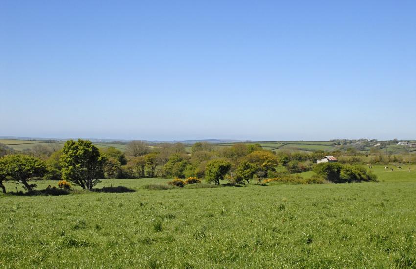 Panoramic views over the Preselis to the coast beyond