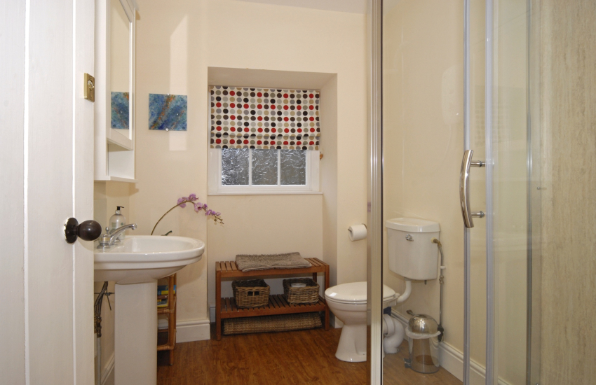 St Davids holiday home - ground floor double shower room