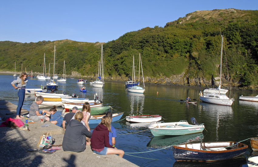 Solva Harbour spot of 'crabbing' off the wall