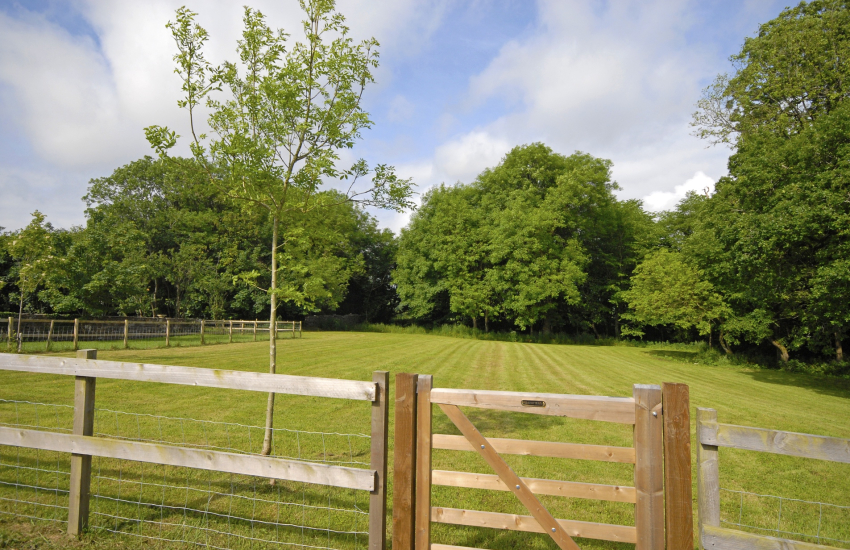 1.5 acre enclosed paddock