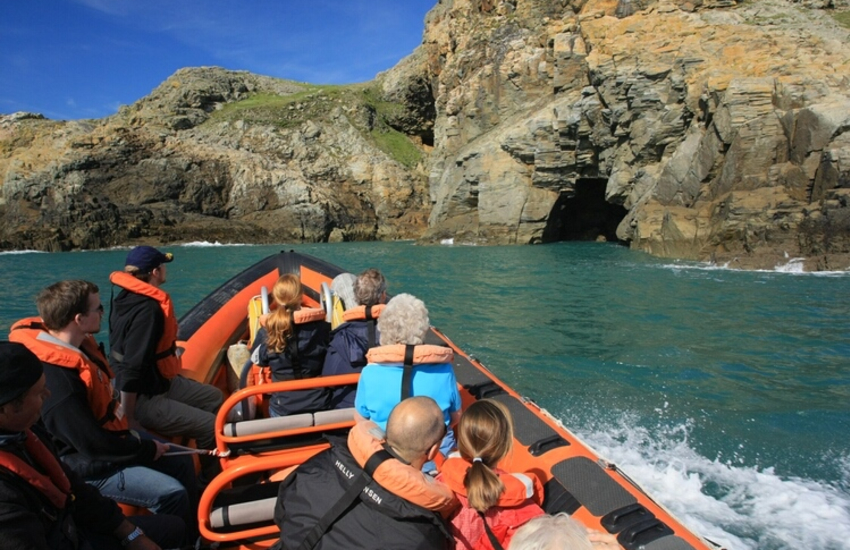 Ramsey Island (RSPB) with wonderful marine and bird life