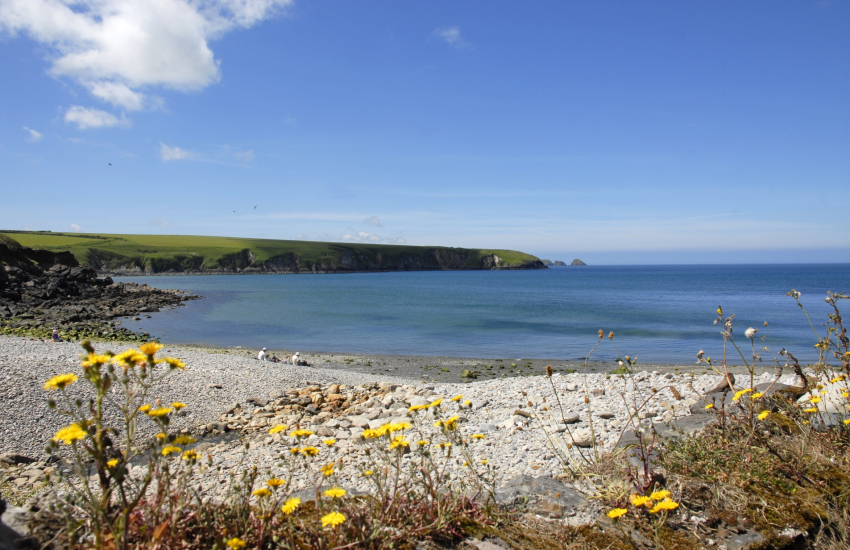 Aberbach and Abermawr (National Trust) are two neighbouring pebble beaches
