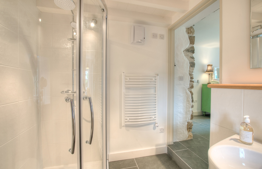 Luxury holiday house Pembrokeshire  - shower-room