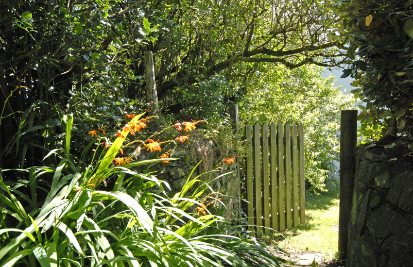 Pet friendly St Davids holiday home with secret garden