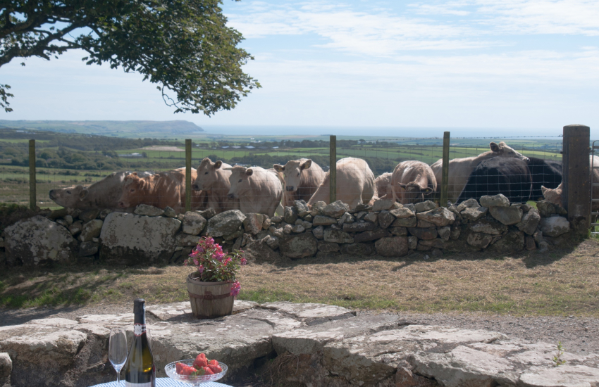 Hells Mouth holiday cottage - view