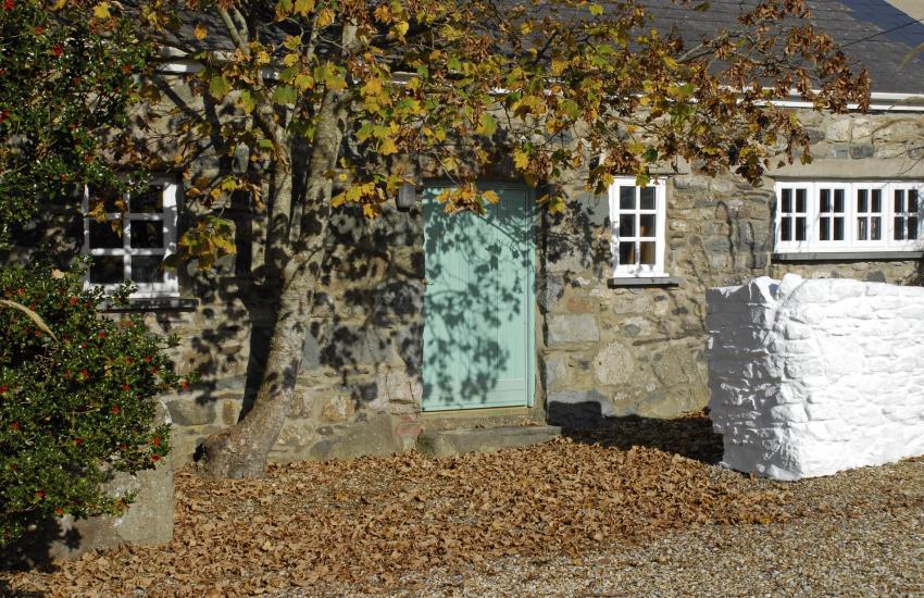 Pet friendly St Davids renovated holiday cottage