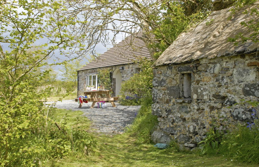 St Davids, Pembrokeshire family holiday cottage - secret garden