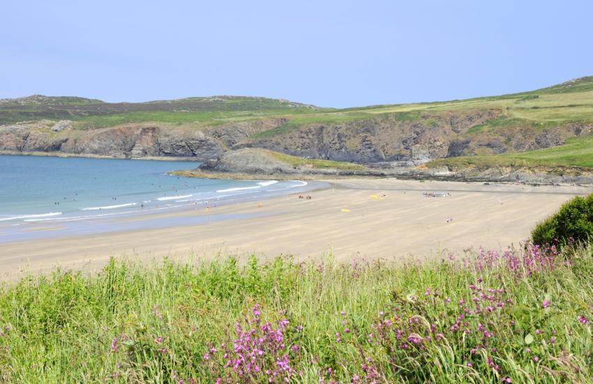 Whitesands Bay is a Blue Flag beach Pembrokeshire