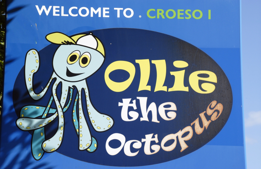 Ocean Lab, in nearby Goodwick, features 'Ollie the octopus'
