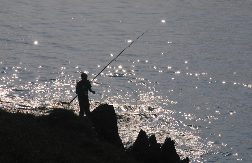 Jurassic Coast is popular for sea bass fishing