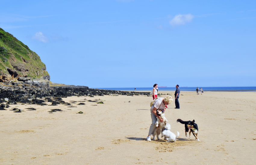 The long unspoilt stretch of sand at Redwharf Bay