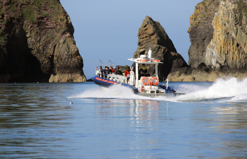 Boat trips run from St Justinian's, Ramsey Island