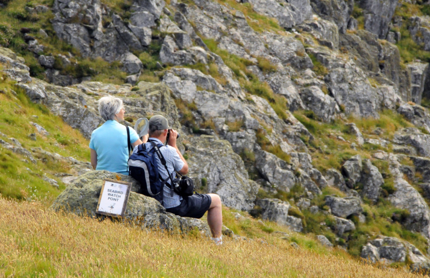 Bird watching on Skomer Island Marine Nature Reserve
