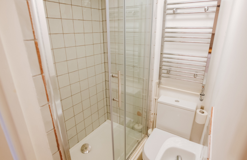 Cottage shower room wc