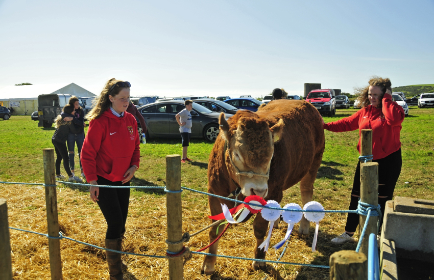 Nevern Show- pack a picnic and enjoy a day out