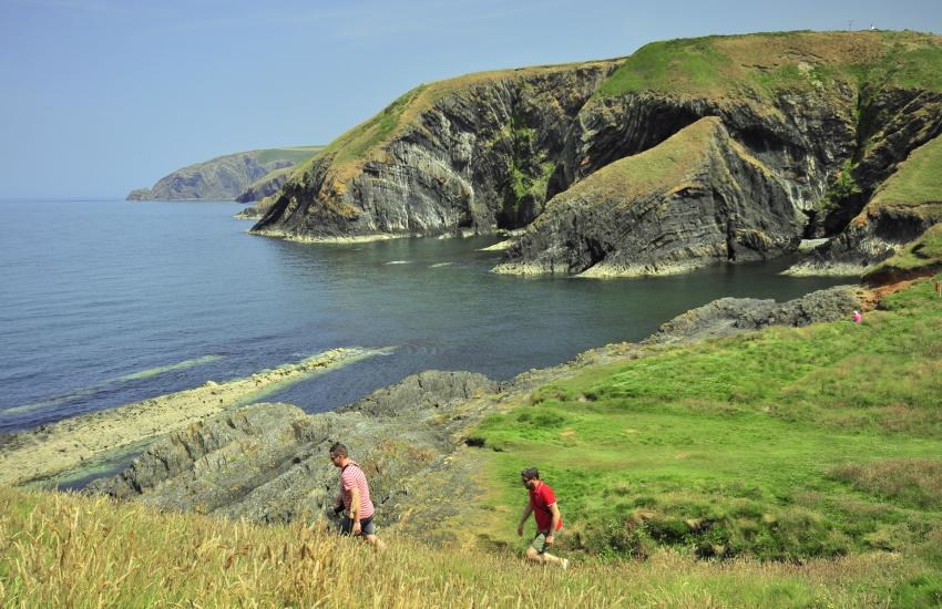Pembrokeshire Coast Path at Ceibwr Cove
