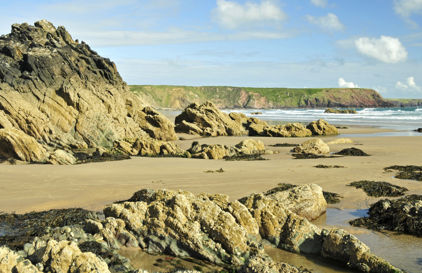 Marloes Sands (N.T) - a beautiful unspoilt golden beach at low tide