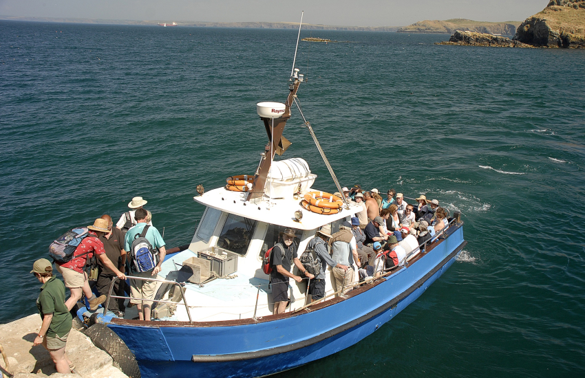 Explore the islands of Skomer, Grassholm and Ramsey (RSPB) by boat