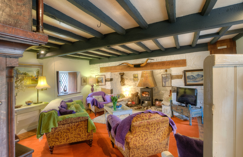 Pet friendly Luxury cottage North Wales - lounge