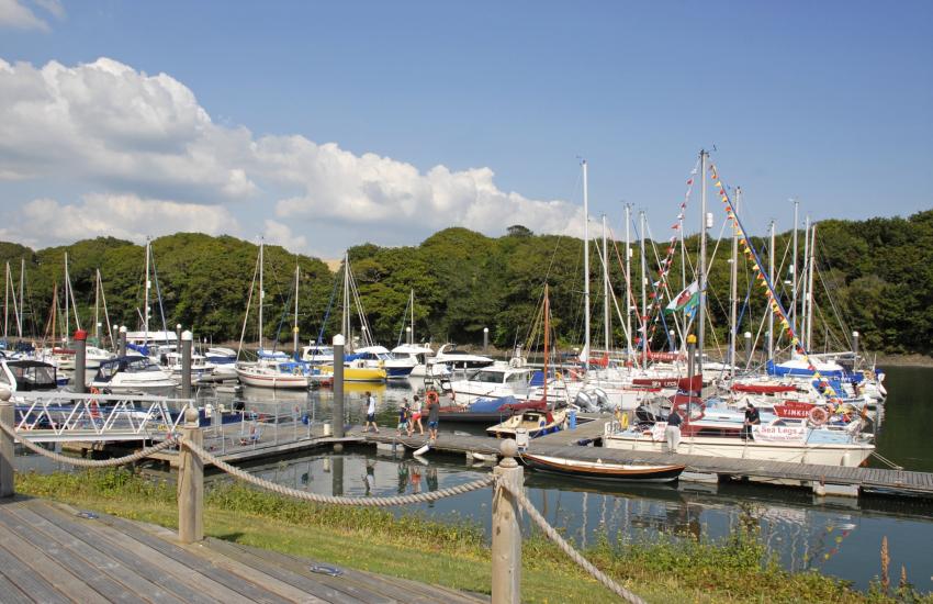 Neyland Marina boat trips