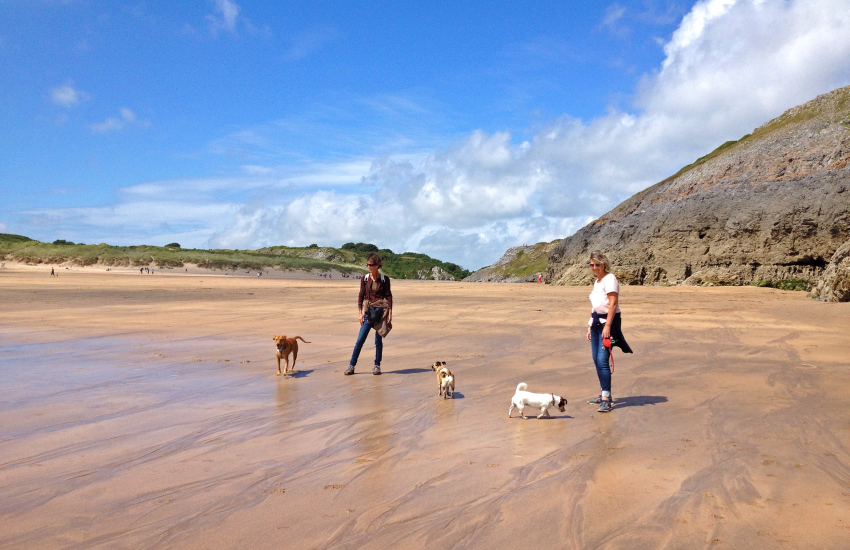 Lilly Ponds leads to stunning Broad Haven South (N.T)