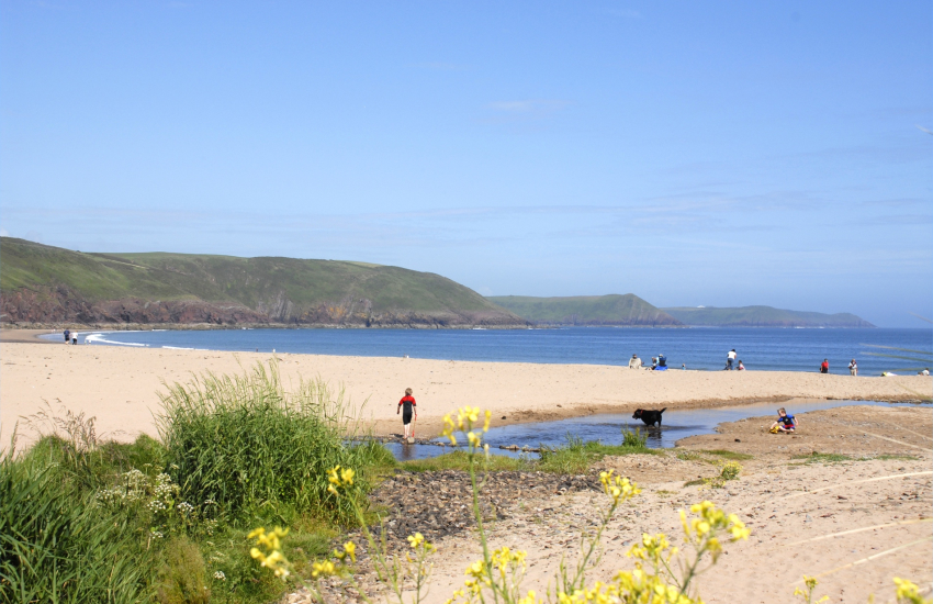 Freshwater East - a dog friendly