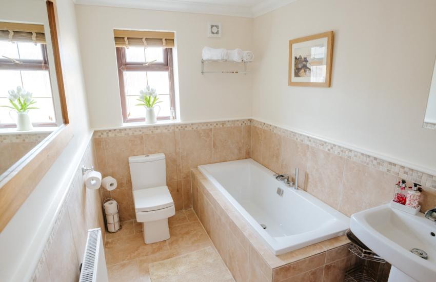Brecon Beacons house-bathroom