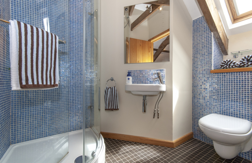 Mathry holiday cottage - master en-suite shower