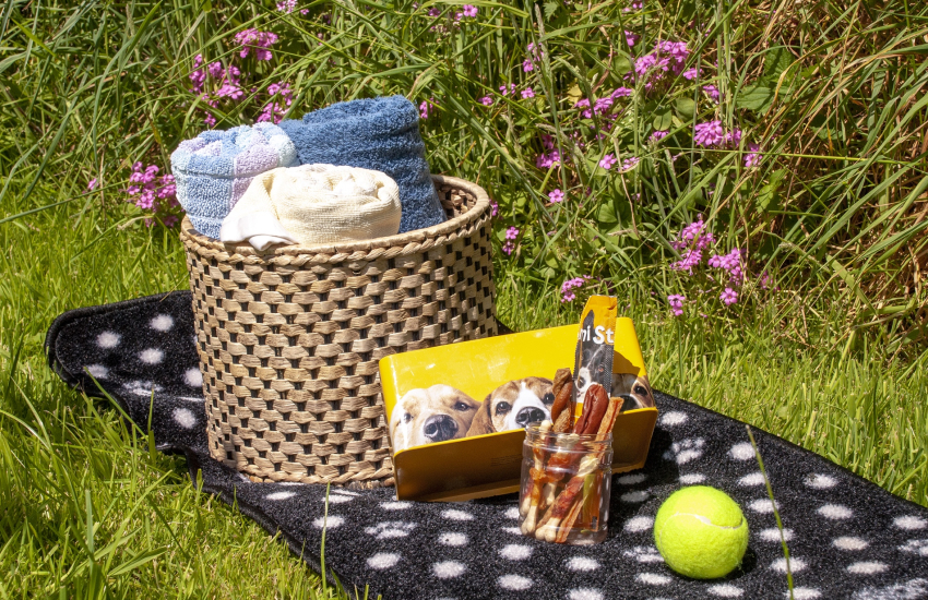 Ty Dewi Barn welcome pack for your pooch!