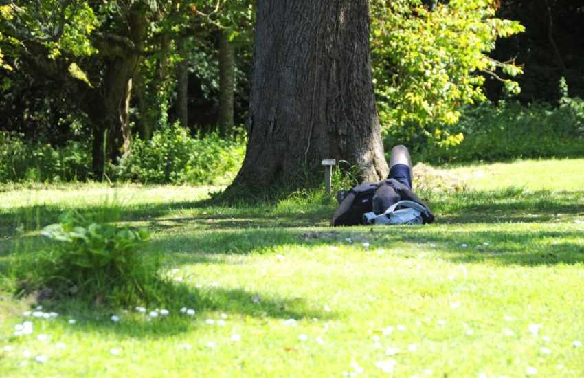 Spend lazy afternoons relaxing in the beautiful grounds of Upton Castle