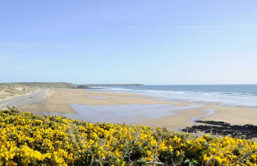 Freshwater West Beach - great for surfing and one of many golden, sandy beaches to choose from along the Pembrokeshire coast