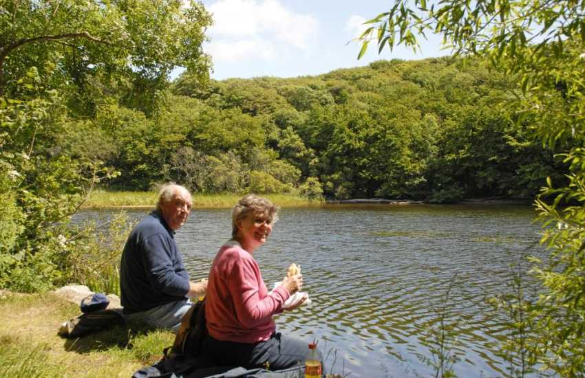 Pack a picnic for the Bosherston Lily Ponds - explore miles of footpaths linking woods, lakes, cliff tops and beautiful sandy beaches