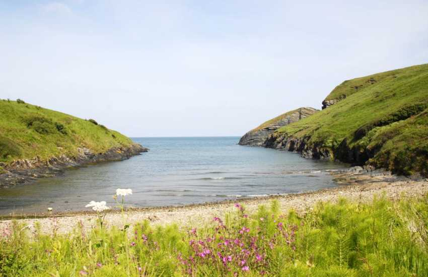 Ceibwr is a sheltered little cove surrounded by spectacular sea cliffs